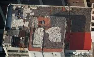 香港一楼顶晒满鱼翅 密密麻麻画面令人触目惊心