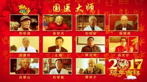 2017全球中医互联网春节团拜会圆满落幕